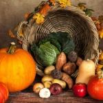 Jakie warzywa i owoce...