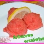 Lody z arbuza (sorbet)