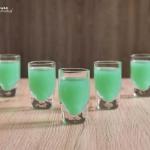 Zielona Ropucha -...
