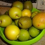 Dżem z owoców pigwowca...