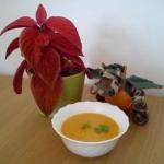 Zupa krem warzywna