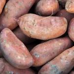 Bataty. Ziemniaki zwane...