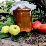 Domowy sok jabłkowy na...
