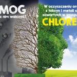 Chlorella w walce ze smog...