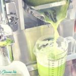 IGREEN algae = jablko + o...