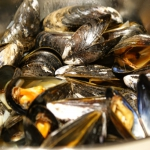 Moules Marinieres/Mule w ...
