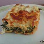 Cannelloni besciamella,...