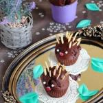 Babeczki czekoladowe...