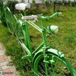 Zielono mi w ZIELONY...