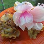 Płatki magnolii w...