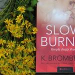 Slow Burn. Kropla...
