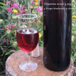 Domowe wino z jeżyn