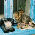O zyciu bez telefonu.