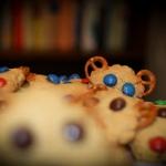 Ciasteczkowe misio-szczur...