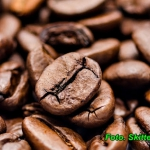 Likier kawowy ( z laską...