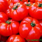 Smoothie pomidorowe z...