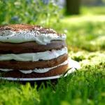 Tort czekoladowy z bita s...