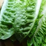 Salata Rzymska