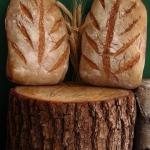 Liść, orkiszowy chleb...