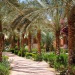 Egipt, Marsa Alam -...