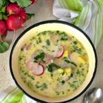 Wiosenna zupa z rzodkiewe...