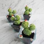 Deser Kaktusy z makaronik...