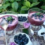 Jogurt jagodowo malinowy